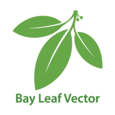 Bay Leaf Vector Logo images