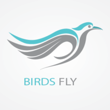 Birds Fly images