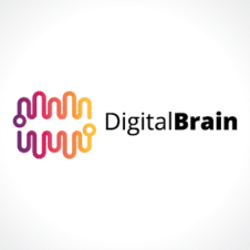 Digital Brain Logo images