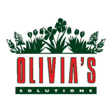Olivia's Solutions Logo Vector images