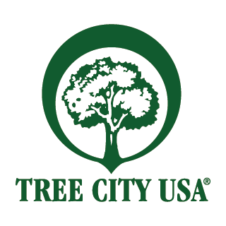 Tree City USA Logo Vector images