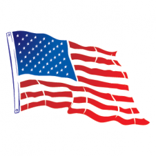 USA Flying Flag Vector Logo images