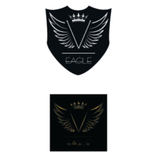 V Eagle Logo Vector images