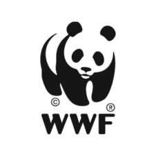 WWF Logo Vector images