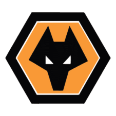 Wolves Logo Vector images