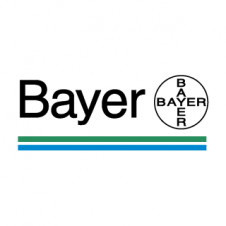 Bayer Logo Vectors images
