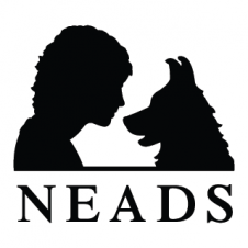 Neads Vector Logo images