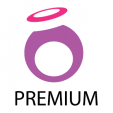 Premuim Development Services Logo Vector images