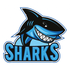 Funny sharks vector logo template images