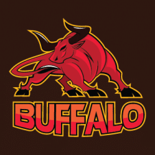 Buffalo Hand Drawn Logo Vector images