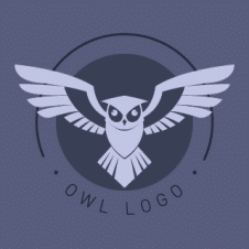 Owl Flat Vector Logo images